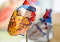 Cтало известно, как распознать инфаркт у молодых людей