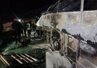 Не менее 20 человек погибли в Египте при ДТП с автобусом