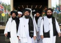Талибы отказались участвовать в конференции по Афганистану