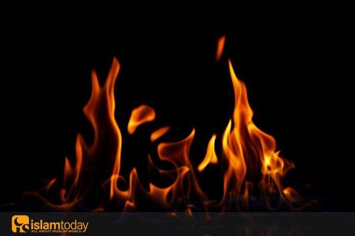 Причина, из-за которой Пророк (с.а.с.) призывал людей жить сообща (Источник фото: freepik.com).
