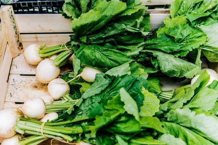 Корнеплод не cлишком привередлив и может расти в любых условиях (Фото: unsplash.com).