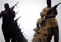 В Египте террористы казнили троих человек