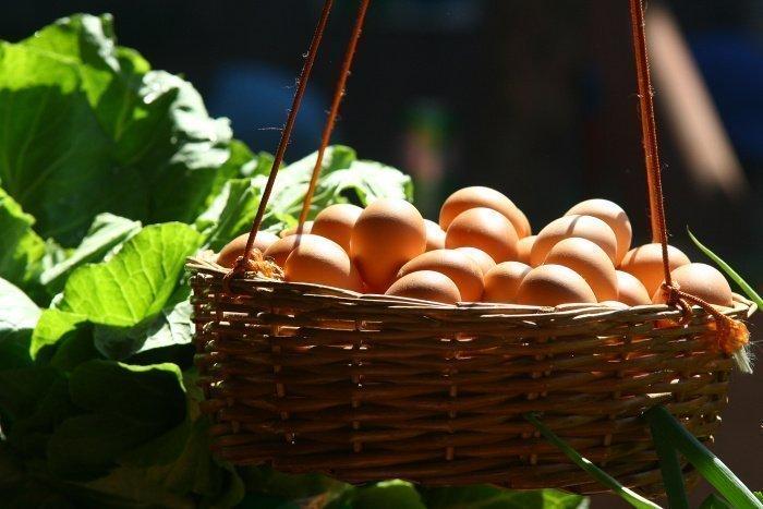 Яйца перед использованием обязательно нужно помыть (Фото: unsplash.com).