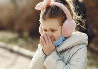 Стало известно, чем грозит несвоевременное лечение сезонной аллергии