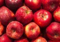 Назван идеальный фрукт, защищающий от онкологии