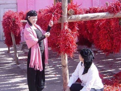 Саларские женщины сушат перец (Источник фото: google.com).