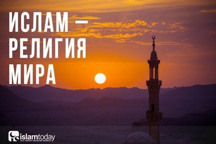 Почему ислам -– религия мира? (Фото: freepik.com).