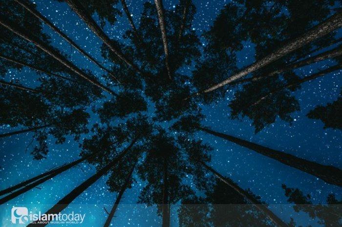 Признаки наступления Ночи Предопределения (Источник фото: freepik.com).