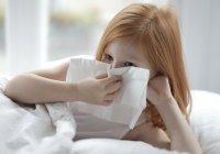 Названа истинная причина распространения эпидемии аллергии