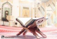 750 аятов Корана, в которых Аллах призывает людей пользоваться разумом