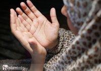 Жена Абу Бакра и мать Айши: какой женщиной была Умм Руман?