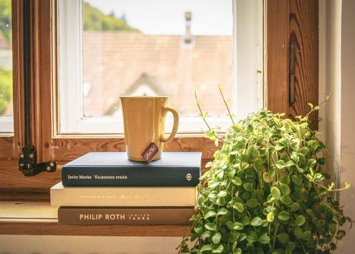 Если с желудком все в порядке, то разрешается пить зеленый чай (Фото: unsplash.com).