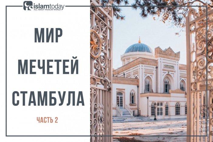 Мир мечетей Стамбула (Источник фото: zen.yandex.ru).
