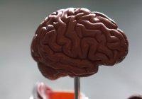 Обнаружен вред коронавируса для серого вещества мозга