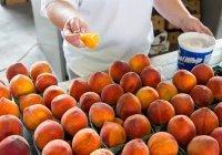 Названы самые опасные для детей фрукты