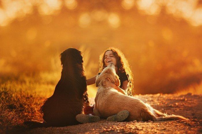 Этой способностью обладают далеко не все животные (Фото: unsplash.com).