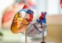 Стало известно, можно ли предотвратить внезапную сердечную смерть