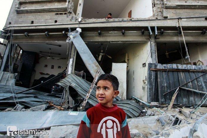 Ситуация в Палестине (Источник фото: ria.ru).