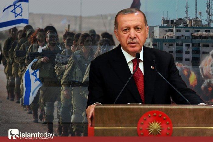 Эрдоган назвал Израиль «террористическим государством» (Фото: riafan.ru).