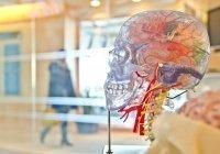 Европейские врачи озвучили ранние симптомы образования тромбов