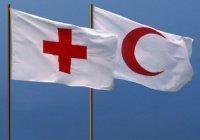 Красный Крест и Красный полумесяц попросили у России вакцину «Спутник V»
