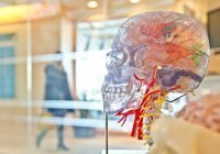 Ученые предложили новый способ определения смертельного заболевания