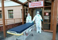Иммунолог заявил о завершении эпидемии коронавируса в России