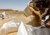 Россия поставит в Сирию миллион тонн пшеницы