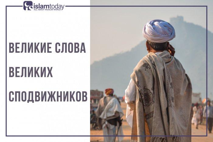 Великие слова великих сподвижников (Источник фото: unsplash.com).