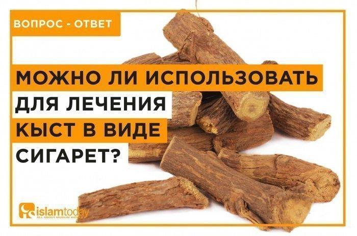 Можно ли использовать кыст в виде сигарет? (Источник фото: yandex.ru).