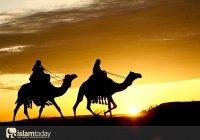 Чему нас могут научить первые мусульмане, последовавшие за Пророком ﷺ?