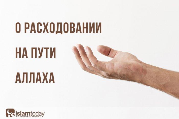 О тратах по Аллаху (Источник фото: freepik.com).