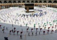 Почти полмиллиона заявок на совершение хаджа приняли в Саудовской Аравии за сутки
