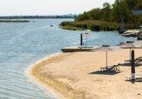 Коронавирус не передается при купании в водоемах – эксперт
