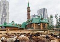 На Курбан-байрам в Казани подготовлены 16 мест для заклания жертвенных животных