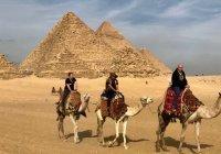 Египет примет привитых от коронавируса без ПЦР-тестов