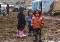 Красный крест призвал страны забирать своих граждан из лагерей беженцев в Сирии