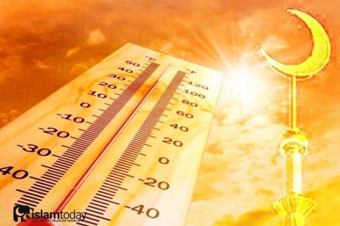 Покрытое тело в жару гораздо легче переносит высокую температуру воздуха (Фото: forpostsevastopol.ru; citinewsroom.com).