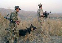 МИД Узбекистана сообщил о переходе 53 афганских военных через границу с республикой