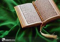 Что в Коране говорится о прощении?