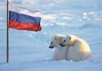 «Дальневосточный гектар» можно будет получить в Арктике