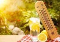 ВОЗ назвала напитки, противопоказанные в жару