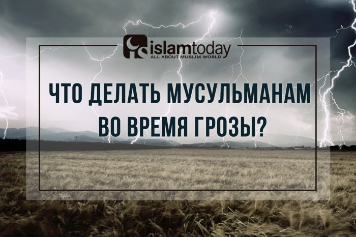 (Фото: artfile.ru).