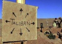 «Талибан» заявил, что контролирует почти половину территории Афганистана