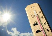 Россиян предупредили о наступлении экстремальной жары