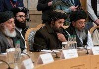 Талибы пообещали не нарушать границ стран Центральной Азии