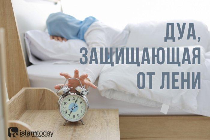 Лень – это начало безуспешности (Фото: shutterstock.com).