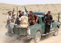 МИД: ИГИЛ может воспользоваться ситуацией в Афганистане