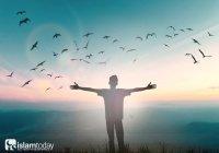 Являются ли благодеяния на самом деле путевкой в Рай?
