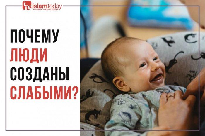 Какие умозаключения можно сделать, посмотрев на сынов Адама (а.с.)? (Фото: freepik.com).
